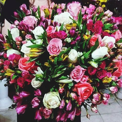 My Flowers Sweet_the_art 💕💕💕💕🌺🌹🌷🌸💐☀💕💕💕💕I Do What I Want How Ever I Want When I Want How I Want Wther U Lije It Or Not :)