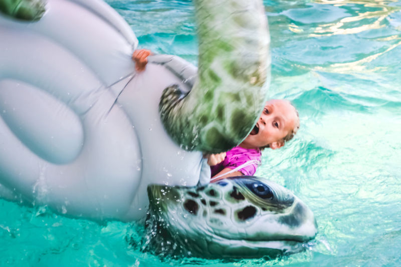 young girl having fun in the pool, falling off an inflatable Water Pool One Person Swimming Swimming Pool Childhood Leisure Activity Nature Child Fun Enjoyment Animal Happiness Underwater Offspring Day Floating On Water Animal Themes Inflatable  Outdoors Innocence Vacations Splash Falling
