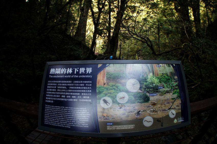恩愛農場 Communication No People Contrasts Device Screen Space Text Technology Close-up Tree Nature Indoors  Astronomy 臺灣 Taiwan