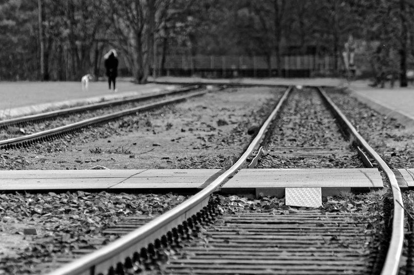 Blackandwhite Bw_collection Bw_lover Day EyeEm Lifestyles Metal Rail Transportation Railroad Track Rear View Streetphotography The Way Forward Transportation Travel Uraban Walking Welcome To Black