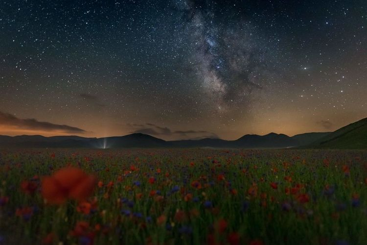 Scenic shot of star field against star field at night