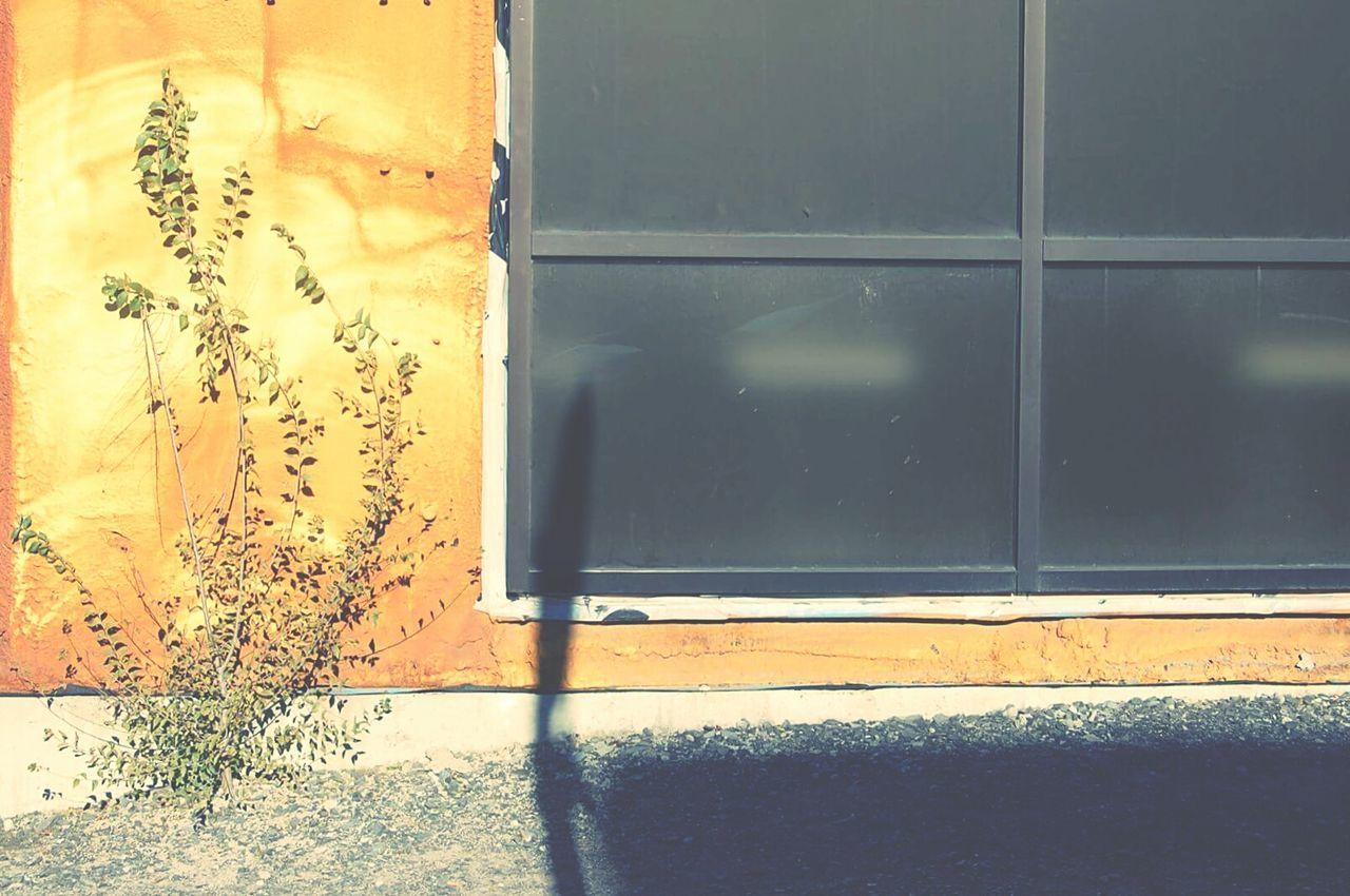 door, window, open, day, no people, outdoors, close-up, sliding door