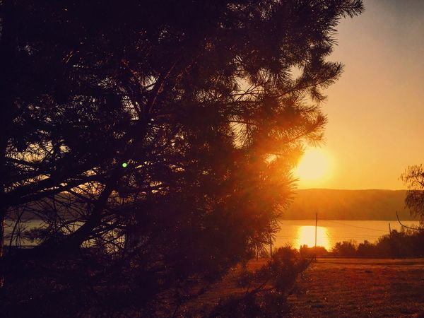 Everyday is a new beginning. Take a deep breath and start fresh! Sunrise over Seneca Lake, NY. What a beautiful sight to wake up to. Iphone6 IPhoneography Iphonephotography IPhone Photography Rays Of Light Nature On Your Doorstep Beautiful Newyorkstate Fingerlakes SenecaLake Morning Light Sunrise_Collection Sunrise Things I Like