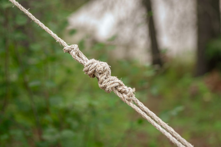 Close-up of rope tied on field
