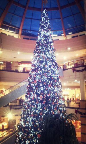 Comenzó la navidad Navidad