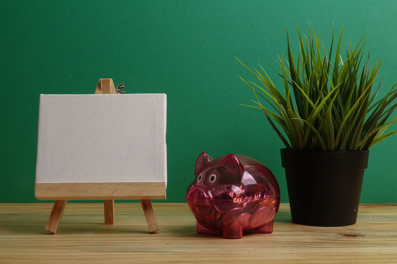 Close-up of coins in piggy bank with potted plant on table
