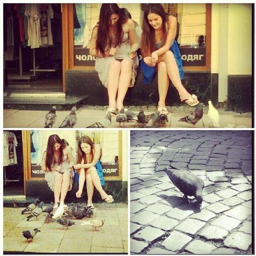 Дівчата Сітібренд голуби