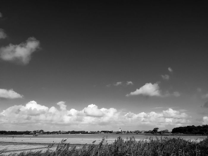 B&W landscapes 2: An experiment. I like the contrasts between the land, the clouds and the sky. It was a beautiful day though. Expect more pictures coming from the island of Texel as I am going there next summer! EyeEm Best Shots - Black + White Monochrome EyeEm Best Shots Sky Cloud - Sky Land Nature Landscape Environment Day Beauty In Nature Field Plant Tranquility Scenics - Nature Growth No People Agriculture Tranquil Scene Outdoors