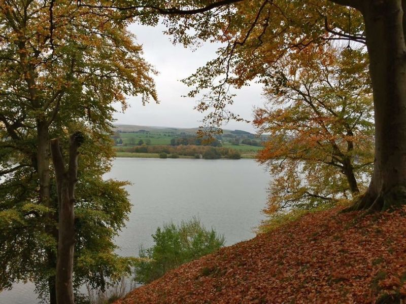 EyeEmNewHere Tree Water Lake Nature Scenics Beauty In Nature Tranquility Autumn Outdoors