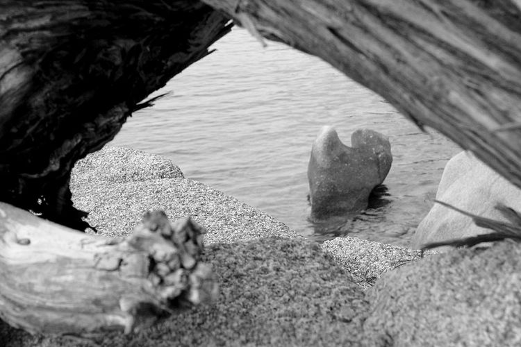 Nature Rock In The Water Sardinia,italy Mediterraneo Black And White Blackandwhite Photography Sea View EyeEm Gallery Eyeem Sea Check This Out Details Of Nature Eyeem Black And White Eye4black&white  Eyeem Black And White Photography Eyeemphotography Summer Black And White Photography Blackandwhitephotography Black And White Collection  Sea Black And White EyeEm Nature Collection Nature Black And White EyeEm Sea Collection Sardegna Trunk In The Water