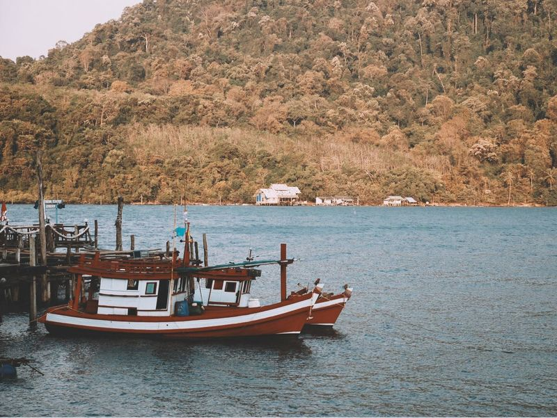 Nautical Vessel Water Tree Day Transportation Nature Mode Of Transport Outdoors Sea No People Moored Tranquility Vacations Beach Sailing Beauty In Nature Architecture