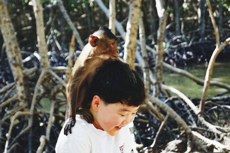 Close-up of monkey sitting on cute boy shoulder