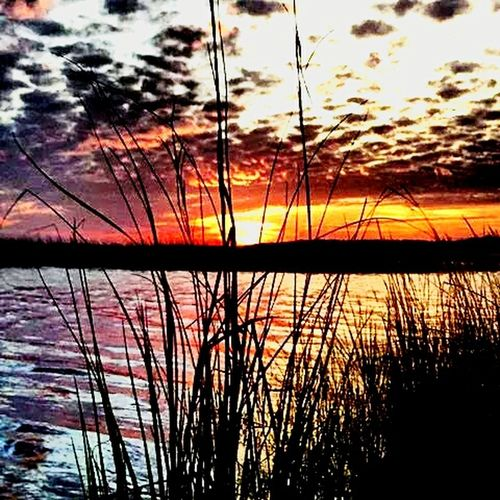 Learn & Shoot: Simplicity Taking Photos Hello World Simplicity Saltlife Sunset #sun #clouds #skylovers #sky #nature #beautifulinnature #naturalbeauty #photography #landscape Sunset Harbor Nc Sunsetporn Sunset_collection EyeEm Best Shots - Sunsets + Sunrise EyeEm Sunset