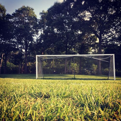 Chase Your Goals Goal Plant Tree Field Grass Growth Land Nature Sport Soccer Field Soccer
