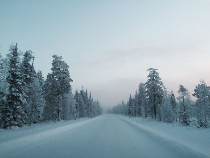 Snow Winter Wonderland Winter Road Lapland Travel Frozen Minusdegrees Trees Snowy Trees Driving Things I Like Shades Of Winter An Eye For Travel