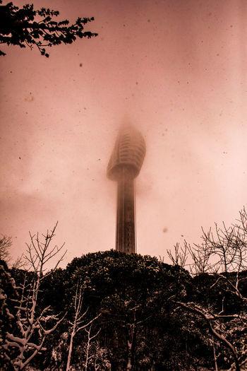 İstanbul. the nameless tower. 2019. Tower EyeEm Best Shots EyeEmNewHere EyeEm Nature Lover EyeEm Selects EyeEm Gallery Politics And Government Sand Dune Desert Tree Sky
