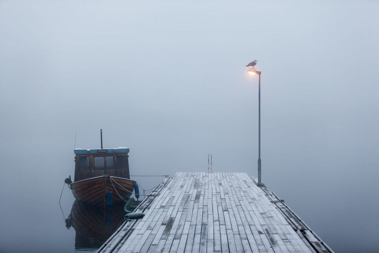 fog on the river Cold Dusk Ice Nautical Vessel Norway Outdoors Telemark River Fog Mist Water Waterfront TransportationStreet Light Porsgrunn Blue Wave The Great Outdoors With Adobe The Great Outdoors - 2016 EyeEm Awards