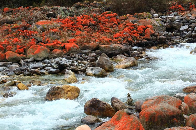 Beauty in Nature Scenery Scenics - Nature Amazing Colorful Wonderful Beautiful Rocks Nature Photography Nature ASIA China Autumn Beauty In Nature Scene Landscape Hiking Trail Famous District Background Holiday Countryside Rural Wonder Dramatic Moist Pebble Beach Water Pebble Beach Scenics