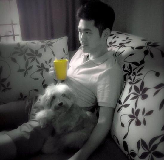 The Week On EyeEm My Dog Mickey Yellow Splash