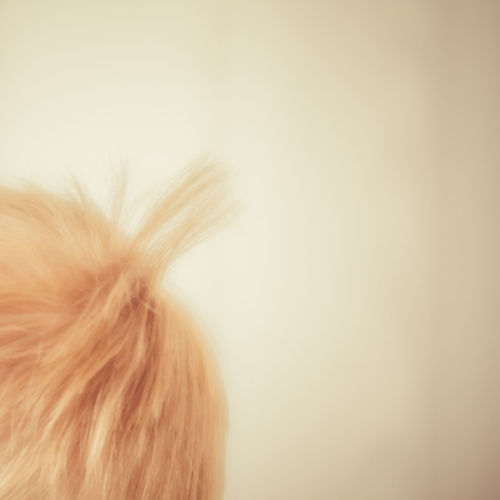Close up of hair against white background