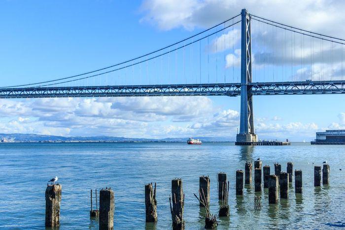 San Francisco USA America Bay Bridge Bridge Ponte United States EstadosUnidos Day Daylight City Blue Blue Sky Blue Wave