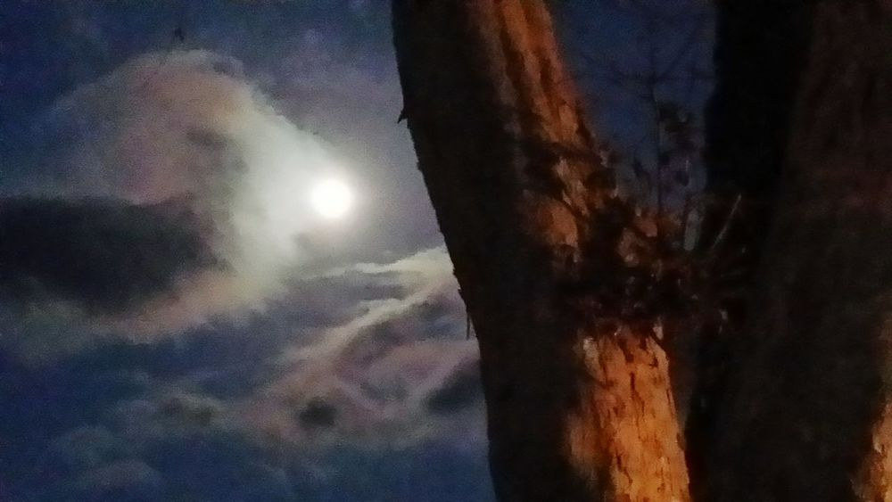 walking after midnight Fullmoon Moon Moonlight Night Lights Night Night View Sky And Clouds Bright_and_bold Full Moon Silhouette From My Point Of View Darkness Night Sky No People Nature Cloud - Sky Sky Low Angle View Outdoors Night