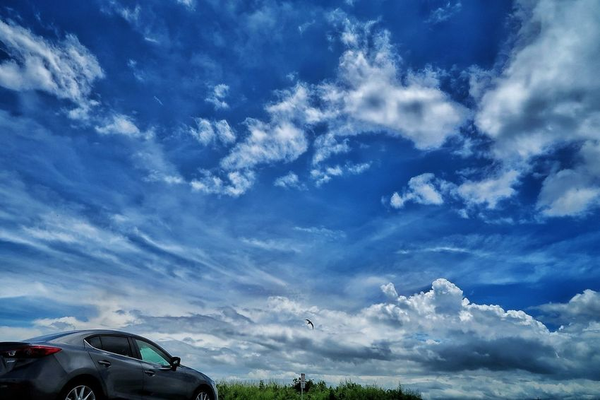 久しぶりの青空😃 いい気持ち☀️ 太陽 お日様 空 青空 雲 梅雨 いま空 マツダ アクセラ Car Wildlife & Nature Rain Rainy Days Cloud - Sky Sky Land Vehicle Blue Beauty In Nature EyeEm Gallery EyeEm Best Shots Dramatic Sky Rainy Season EyeEm Nature Lover Beauty In Nature Nature