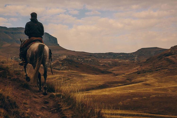 Rear view of man riding horse on mountain against sky