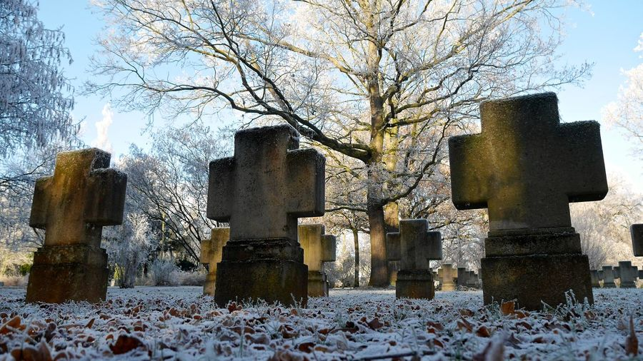 Cemetery Cemetery Photography Cemetery_shots Cold Temperature Day Friedhof Grab Gräber Nature No People Outdoors Sky Snow Tombstone Tree Winter