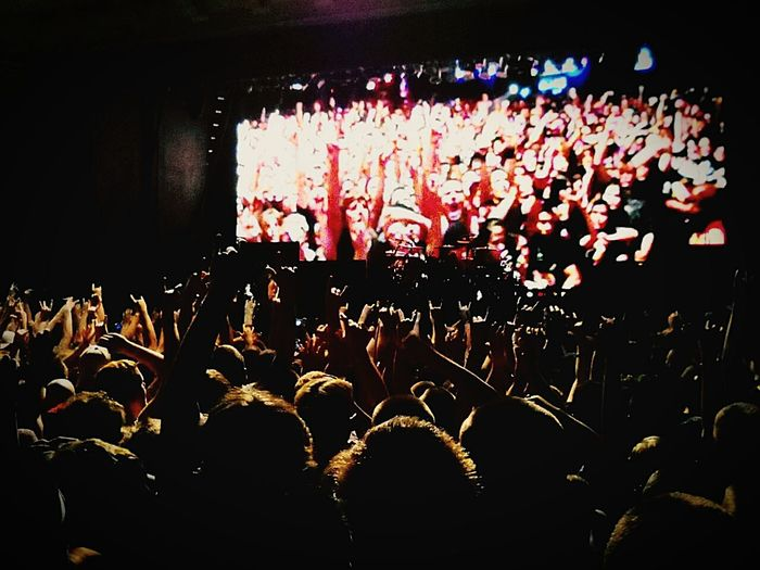 Disturbed Band The Fan Club Live Music Rock'n'Roll Concert❤ Rock Concert Concerts Enjoying Life For The Love Of Music