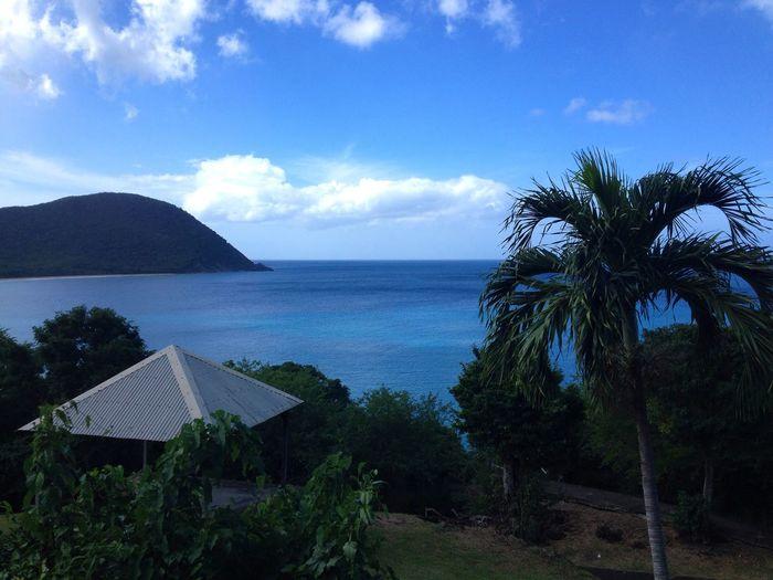 Travel Wanderlust Guadeloupe Paradise Beautiful Nature Caribbean Traveling Sea Enjoying The View