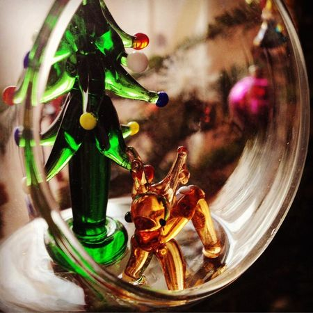 buy pretty decorations Deer Christmas Tree Christmas Decoration Glass Decorations Christmastime Christmas Enjoy The Little Things Glass Objects  Tree Colorful Indoors  Close-up Green Color EyeEmNewHere