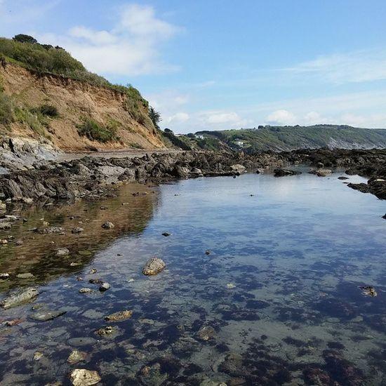 Rock pool Cornwall Looe
