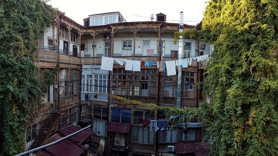"""""""Old Tbilisi lives as long as laundries are hung on balconies"""" - as said in old Tbilisi Street Photography Streetphotography adventures in the city Architecture Photography Garden Photography Tbilisi Architectural Detail Yards Tree Sky Architecture Building Exterior Built Structure Pixelated Creeper Plant Vine Building"""
