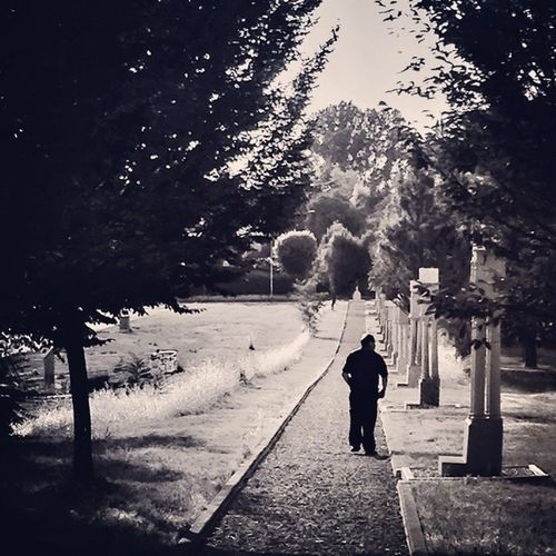 Walk Summer Alone B Italy Shade Iphonography Convento Igersreggioemilia Lifeisbeautiful Scandiano Frati
