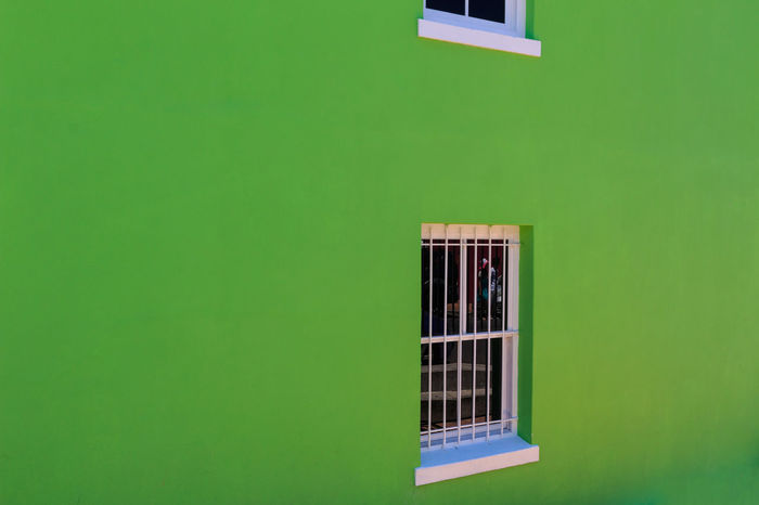 Architecture Bo-kaap Building Exterior Built Structure Cat Close-up Copy Space Day Green Color Indoors  No People Prison Security Bar Window