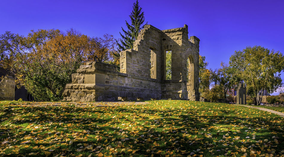 The Rundle Ruins Architecture Building Exterior Built Structure Clear Sky Day Grass Historical Place History Nature No People Outdoors Rundle Ruins Sky Stone Ruins Stone Wall Tree