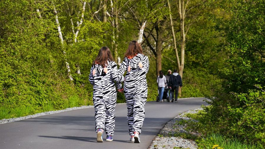Rear View Of Female Friends Wearing Zebra Costume Walking On Road In Forest