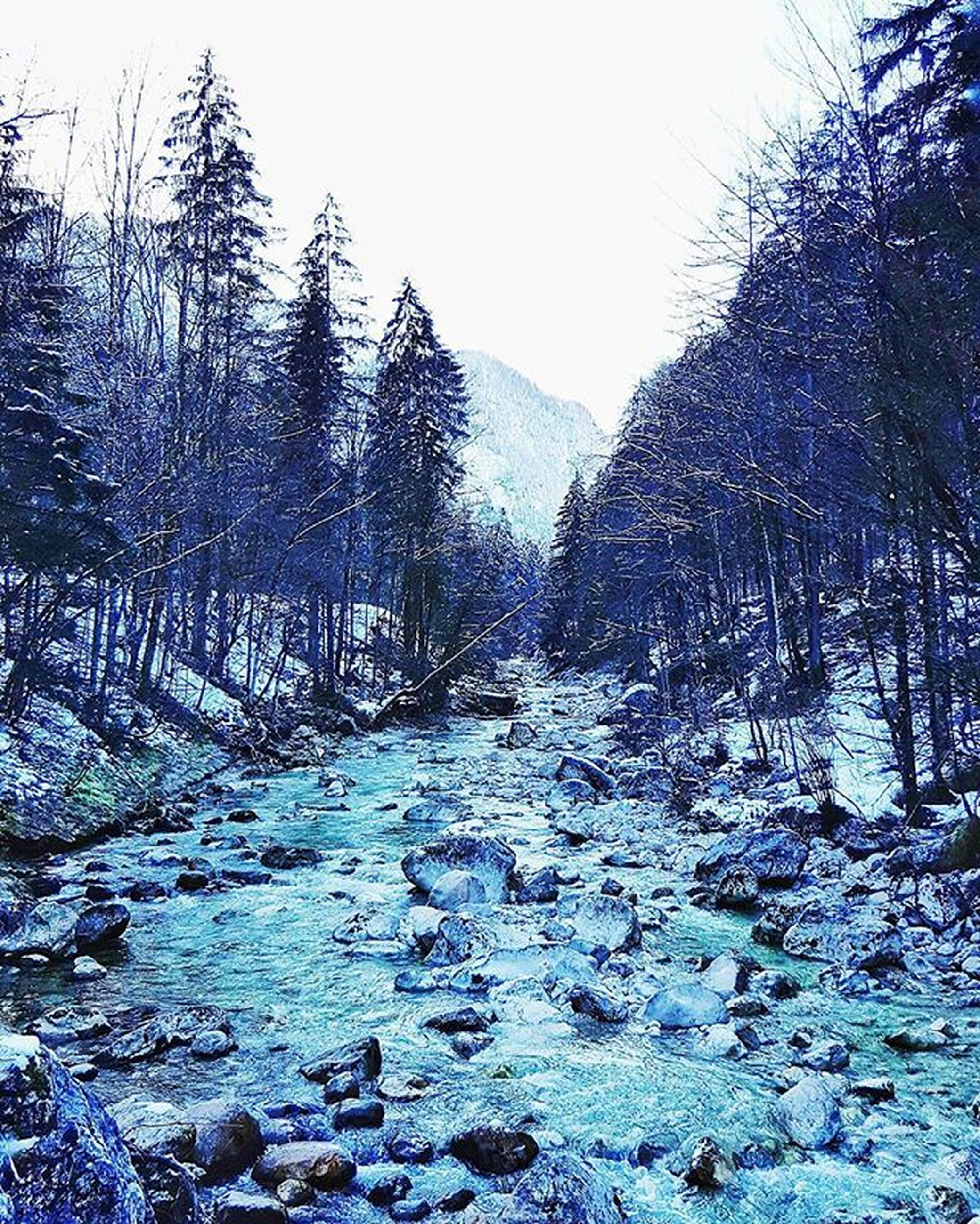 water, tranquil scene, tranquility, scenics, beauty in nature, tree, clear sky, nature, bare tree, lake, winter, non-urban scene, river, landscape, snow, rock - object, cold temperature, idyllic, sky, stream