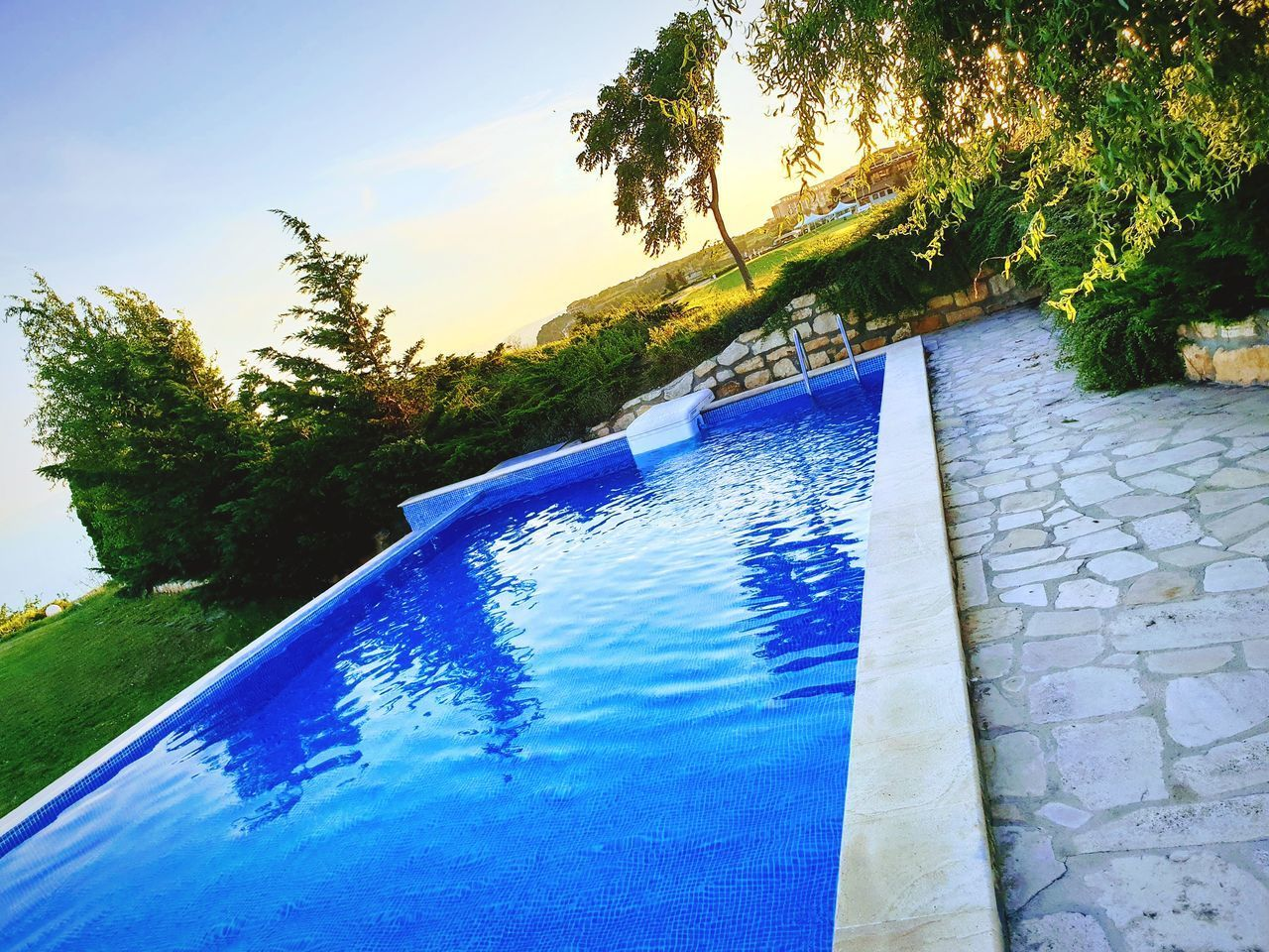 tree, swimming pool, blue, plant, water, pool, nature, sky, no people, day, outdoors, reflection, growth, poolside, cloud - sky, tranquility, architecture, scenics - nature, sunlight, inflatable