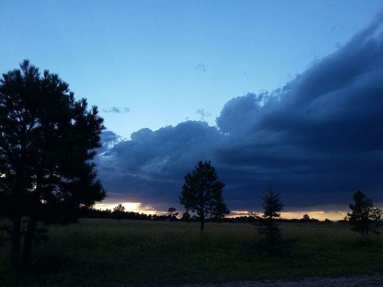 Landscape Night View Cloud Porn😍 Sunset Tree Silhouette