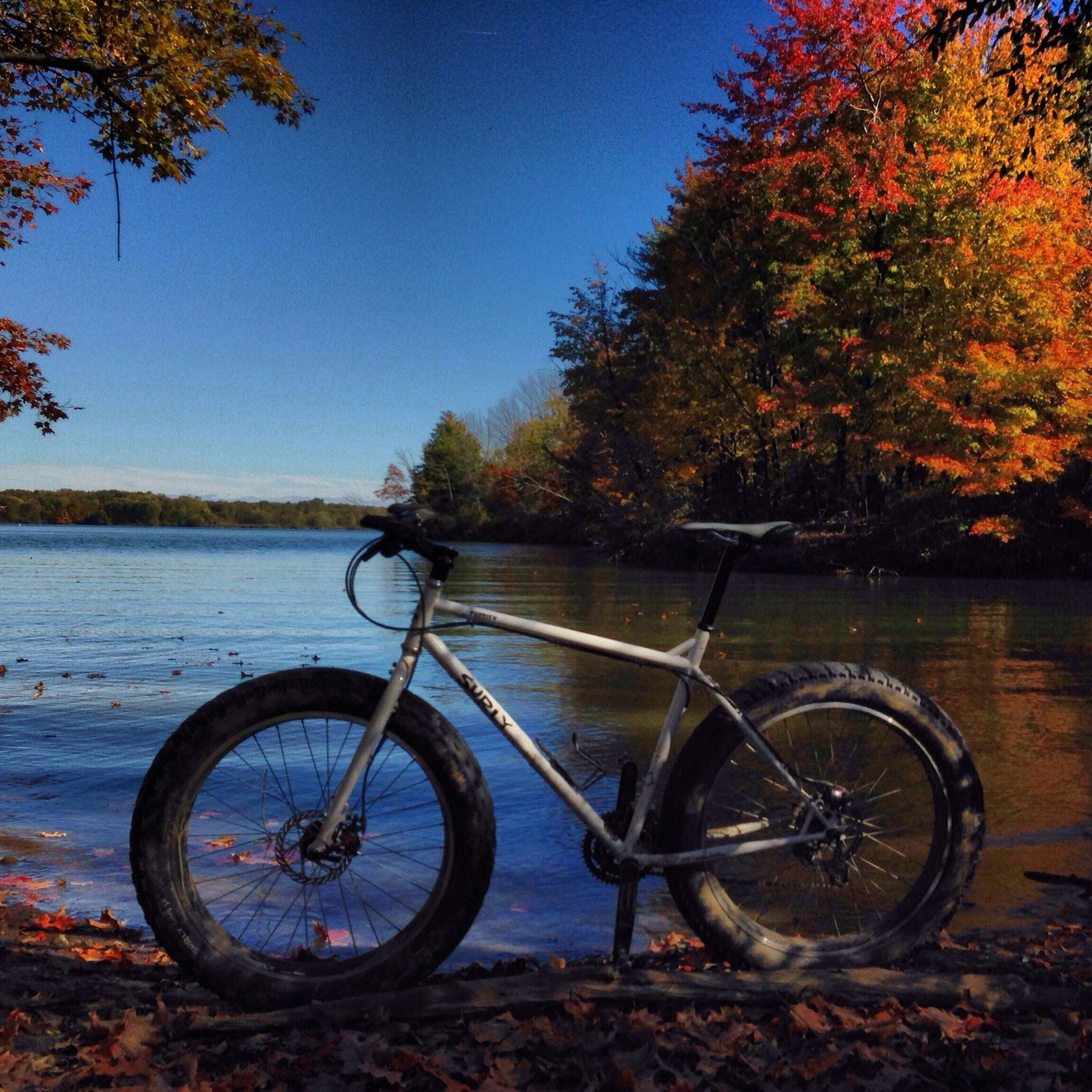 bicycle, tree, water, mode of transport, transportation, lake, tranquility, stationary, tranquil scene, branch, river, land vehicle, parking, lakeshore, nature, scenics, beauty in nature, parked, blue, sky