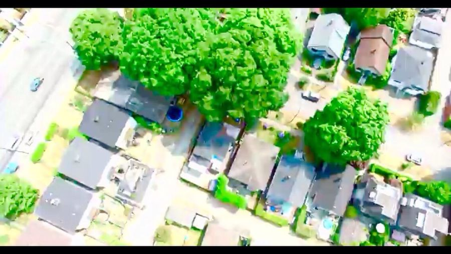 Main And 43rd Avenue South Vancouver Drone Photography Drone Shot Green Color Rooftops Streets British Columbia, Canada