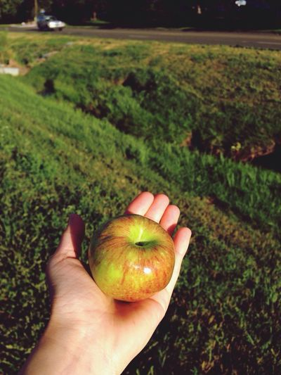 Close-up of cropped hand holding apple