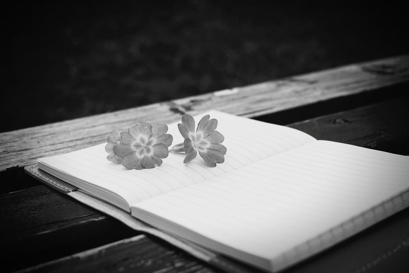 No People Flower Outdoors BookLovers Bookphotography Backandwhitephoto Welcome To Black EyeEmNewHere Black And White Friday