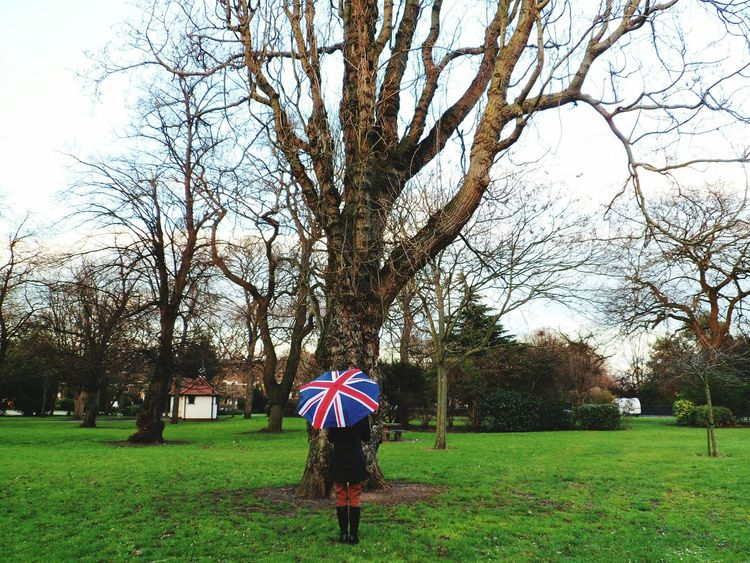 Tree Rear View Real People Outdoors One Person Day Sky People Nature Horizontal Hello World EyeEm Gallery EyeEm Best Shots Beauty In Nature Nature Eye4photography  Tree Woman Umbrella British Culture Union Jack Grass EyeEm LOST IN London
