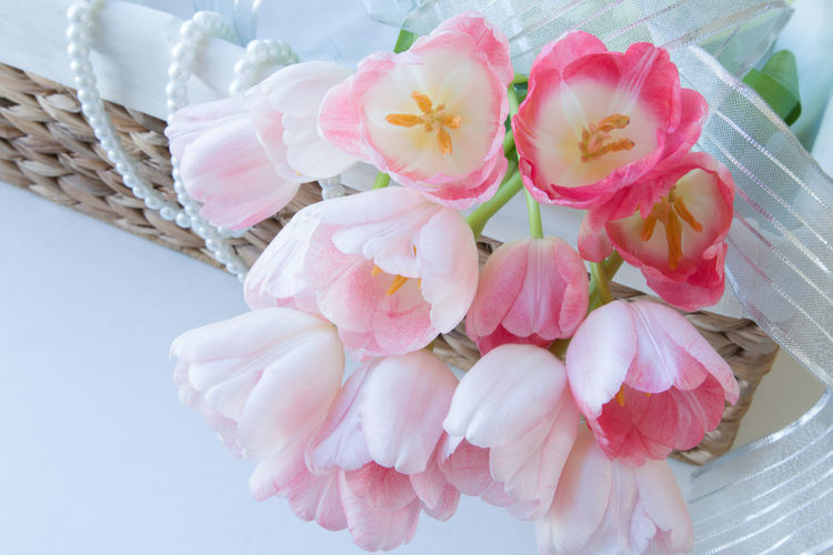 Backgrounds Basket Close-up Day Flower Head Fragility No People Outdoors Ribon Sweet Tuips Wicker