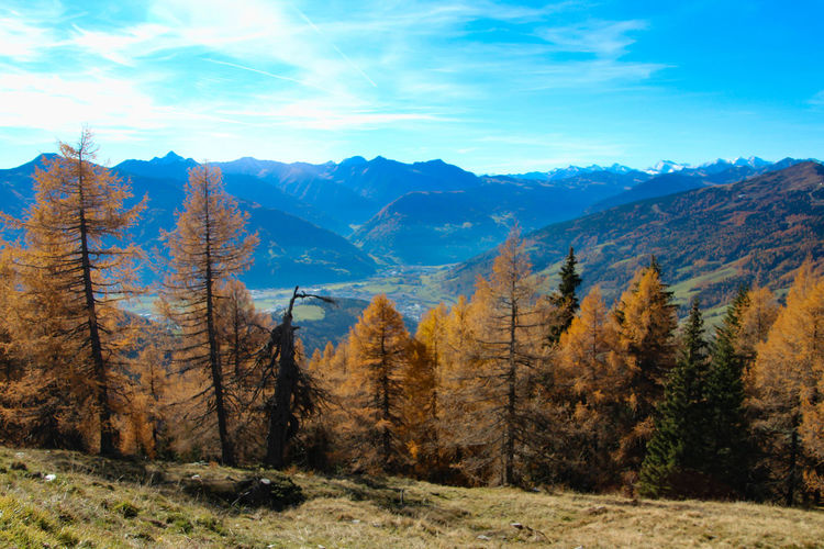 Alto Adige Autumn Beauty In Nature Blue Day Fire Landscape Lightning Mountain Nature No People Outdoors Sky Sterzing Südtirol Tree Tree Trees