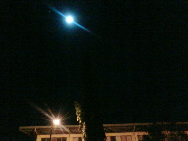 It is a Moonlight ?