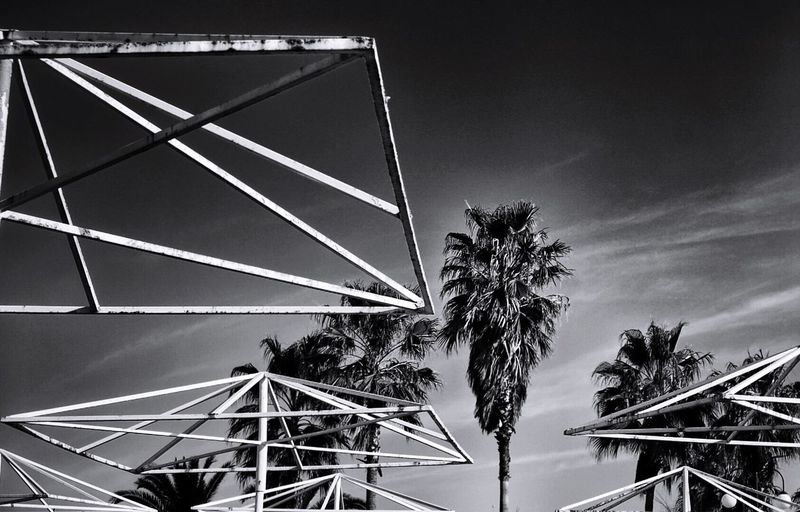 --Beach under construction-- Beach Beachphotography Blackandwhite Black And White Black & White Palm Trees Türkiye Turkey